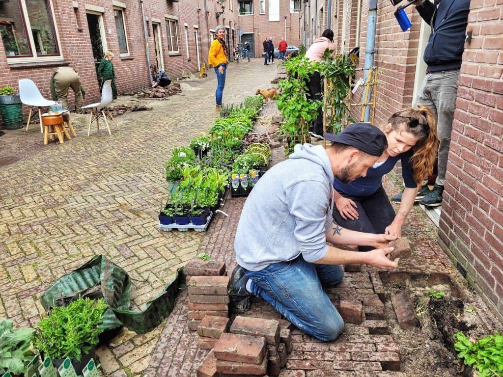 Geveltuinen in Alkmaar